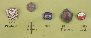Medical pins from the Collection of the Museum of Health Care, 1976.33.3p5, 1900-1930