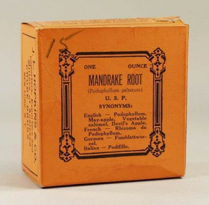 Mandrake root box, J.L. Hopkins & Co., Collection of the Museum of Health Care,  1970.4.9